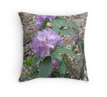 Beauty in Color Throw Pillow