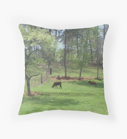 The Farm at Rest Throw Pillow