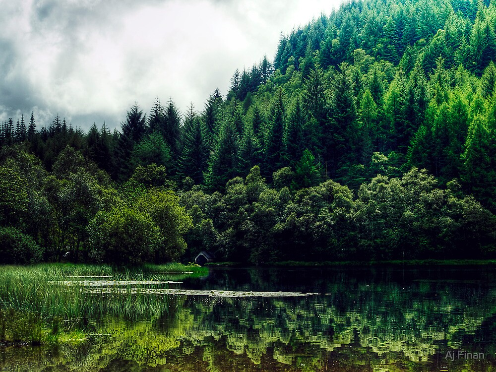 Reflections On Loch Chon, Scotland by Aj Finan