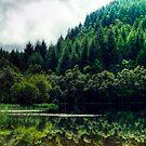 Reflections On Loch Chon, Scotland by Aj Finan