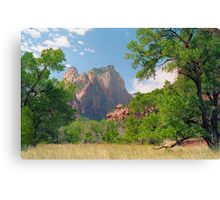 Cathedral Window - Zion National Park Canvas Print