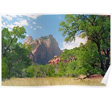 Cathedral Window - Zion National Park Poster