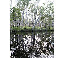 Noosa River Everglades - Reflections 1 Photographic Print
