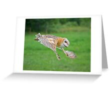 Barn Owl in Flight Greeting Card