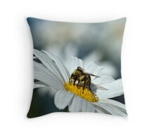 Bee on Daisy Throw Pillow