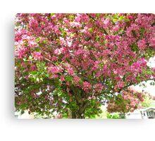 Bubbling Blossoms Canvas Print