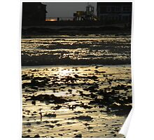 Sunset and Sea Weed Poster