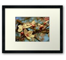 It's Spring Framed Print