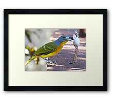 I Said Dance ! Framed Print