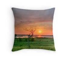 Michigan Sunset Throw Pillow