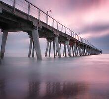 Pink Hues by Shannon Rogers