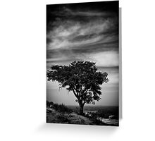 Solitary Greeting Card