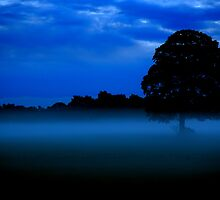 """MISTY BLUES AND OAKY"" by snapitnc"