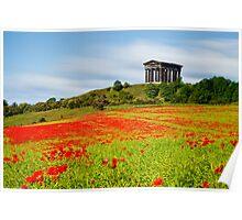 Penshaw Poppies Poster