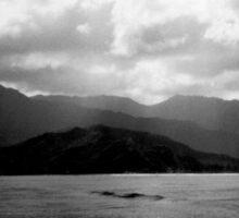 Hawaii Kauai Black & White Photo Sticker
