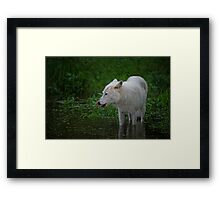 Lip smacking good Framed Print