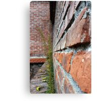 old city wall Canvas Print