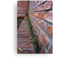 leaves on the old wall Canvas Print