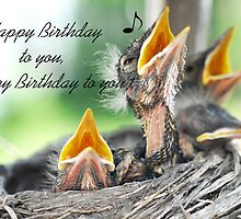 Birthday Greeting Card with baby Robins by marycarnahan