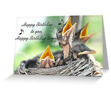 Birthday Greeting Card with baby Robins Greeting Card
