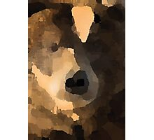 brown bear abstract Photographic Print