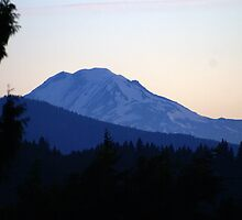 Mt Adams. Washington by Loisb