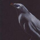Exotic Bird by egdugan
