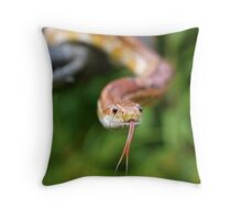 Cornsnake Throw Pillow