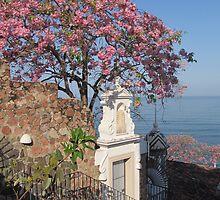 Springtide at the Pacific Ocean - Primavera en el Oceano Pacific by Bernhard Matejka