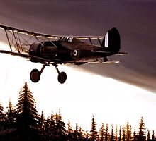 Gloster Gladiator Dusk Drifter. by PAUL57
