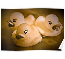 Monochromatic Ducks Poster