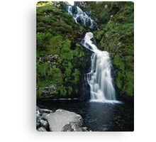 The Assarnacally Waterfall Canvas Print