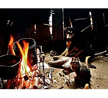 Ecuador: Dog and Cat by the Fire Photographic Print