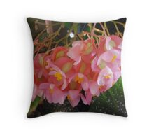 Millie's Angel Leaf Begonia Throw Pillow
