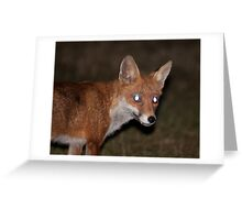 Urban Fox 3 Greeting Card