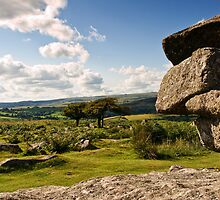 Two Trees at Combestone Tor by moor2sea