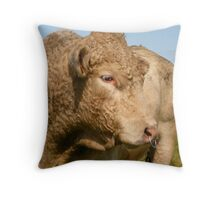 Profile of a Bull -Ireland Throw Pillow