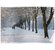 Snowy Weather in Maynooth Poster