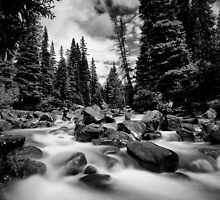 Colorado Stream by Steve Leath