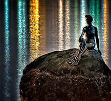 Swimmer Rock (HDR) by James Zickmantel