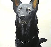 German Shepherd 1 by C.A. Rowe