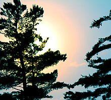 Muskoka sunset by siana  muser