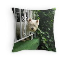 HARK! Who goes there and dost thou come bearing bones? Throw Pillow