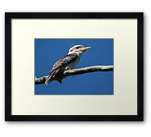 Not Laughing now Kermit Framed Print