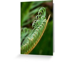 New growth unfurling Greeting Card