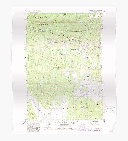 USGS Topo Map Oregon Foreman Point 279917 1962 24000 Poster