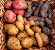 Organic Potatos by Janie. D