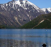 Cold Water Lake, Washington by Loisb