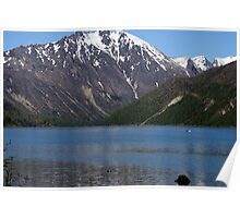 Cold Water Lake, Washington Poster