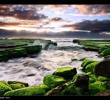 Turrimetta Green by JayDaley